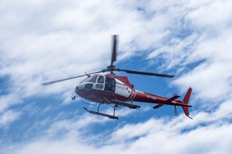 dscf4036-chopper